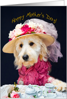 Happy Mother's Day - Dog - Dressed-up - Hat - Kati's Collection card