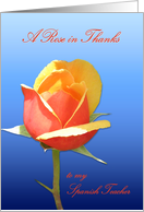 Spanish Teacher Rose in Thanks card