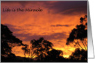 Photo - Life is the Miracle - Sunset card