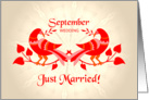 september wedding, birds in love, just married card