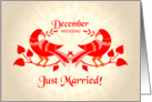 december wedding, birds in love, just married card