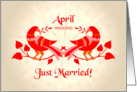 april wedding, birds in love, just married card