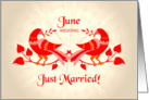 june wedding, birds in love, just married card