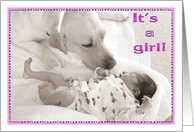 Its a girl, sister, puppy, congrats card