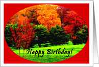 Happy Birthday, Fall, Friend, Co-worker, card