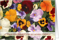 Happy Birthday, Russian - colorful pansy flowers card