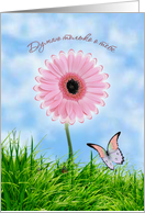 Russian Thinking of you card with pink daisy-gerbera and butterfly card
