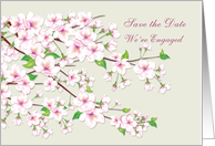 Save the date, Engagement Party - Cherry blossom (Sakura) card
