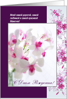 Russian Mom Birthday - White Orchids card