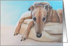 Greyhound Birthday Card