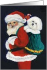 Christmas Bichon Frise card