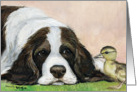 Birthday Springer Spaniel card