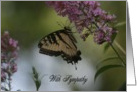 Sympathy Butterfly card