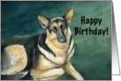 Birthday German Shepherd card