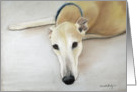 Birthday Greyhound card