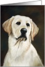 Father's Day, Yellow Lab card