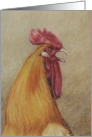 Happy Birthday Rooster card