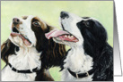 English Springer Spaniel Birthday card