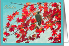 Happy Birthday born in October, birthday month bird red autumn leaves photography card