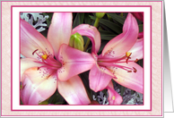 Pink Lilies-Birthday card