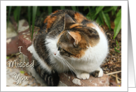 I missed you/ Welcome Home-Calico Cat Photo card