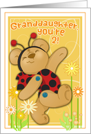 Ladybug Bear- Granddaughter 2nd Birthday card