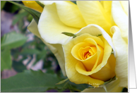 Yellow Rosebud Scriptural Encouragement card
