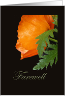 Farewell, Orange Poppy card