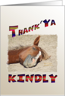 Funny Thanks, Smiling Horse card