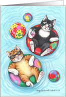 Swimming Pool Party Cats Invite (Bud & Tony) card