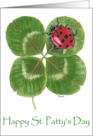Ladybug and Luck card