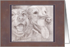 Note Card - Eager Dog Buddies Drawing card