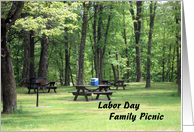 Family Picnic in the Woods Invitation for Labor Day card