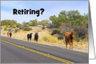 Roam Free in Your Retirement, Free Range Cattle card