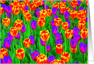 Neon Tulips -friend birthday card