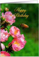 Happy Birthday - Honeybee with Wild Roses card