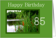 Happy Birthday to Age 85 - Cat Tails on the Water card