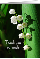 Thank You Lily of the Valley card