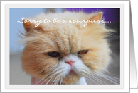 Miss You, Sourpuss Persian Cat card