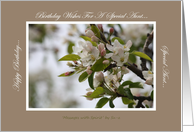 Joyful Blossom - Aunt's Birthday Wishes - By Su-z card