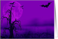 Halloween Sweet Sixteen Invitation, bats on purple card