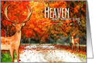 Thanksgiving - Heaven and Nature Sing Autumn Forest card