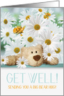 for Kids Get Well Teddy Bear and White Daisy Garden card