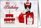 Birthday on Christmas Day Custom Kitten in Red and White card