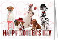 Happy Mother's Day for Dog Lover in Pink and Red card