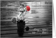 I Love You Squirrel with Carnation Black and White card