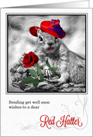 Get Well Wishes for a Red Hatter Funny Squirrel card