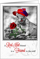 Red Hat Friendship Funny Squirrel card