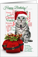 Birthday on Christmas Day Tabby Cat and Mouse card
