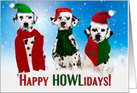 from All of Us Christmas Dalmatian Dogs Merry & Bright card
